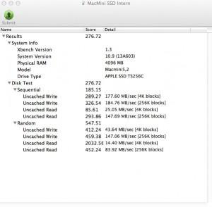 MacMini SSD Intern