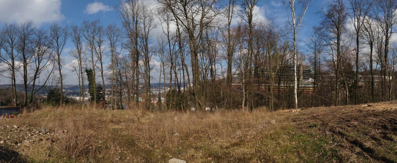 Unser-Petershaus_Grundstueck6